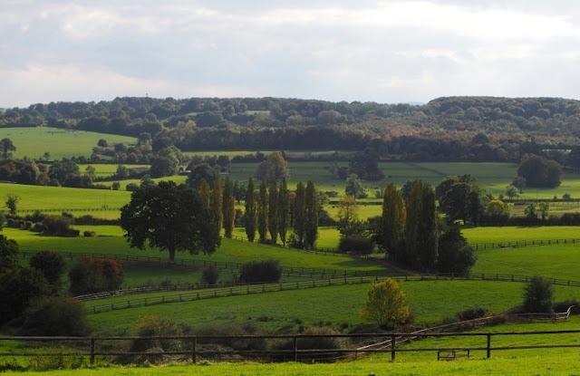 Orne, Bellême, Mortagne-au-Perche, Pin du Haras, Normandische platteland, calvados, cider, pommeau, boudin noir, Perche, normandische paarden, normandische koeien,