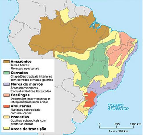 Mapa Fitogeográfico do Brasil