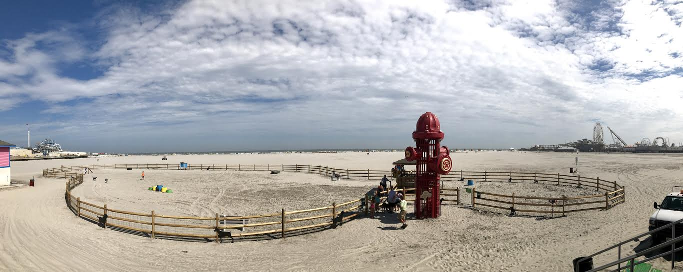 As Of 4 P M This Afternoon The New Wildwood Dog Beach Was Open To Public
