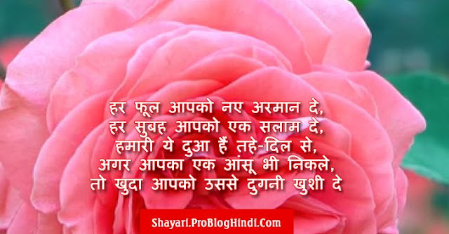 rose day shayari, happy rose day shayari, rose day wishes shayari, rose day love shayari, rose day romantic shayari, rose day shayari for girlfriend, rose day shayari for boyfriend, rose day shayari for wife, rose day shayari for husband, rose day shayari for crush