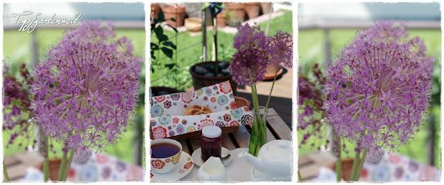 Zierlauch - Allium in der Vase
