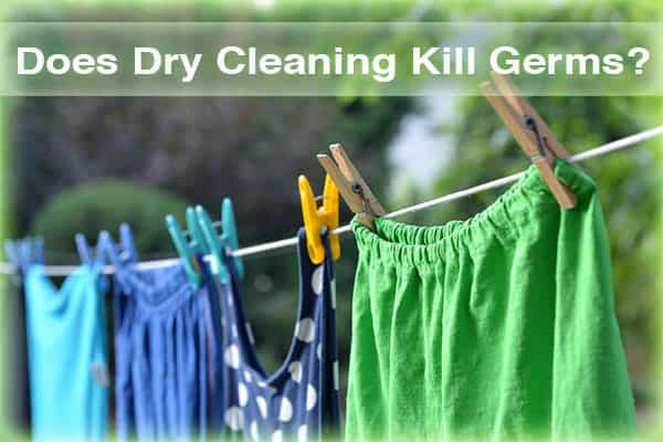 Does Dry Cleaning Kill Germs? Know Facts | How Webs