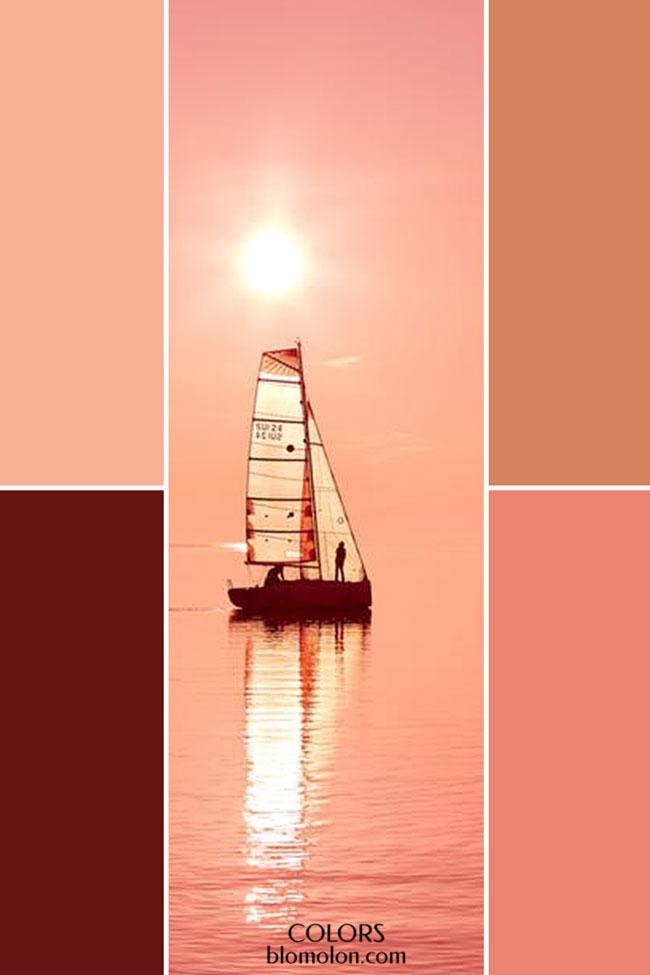 combinacion_variedad_de_color_4