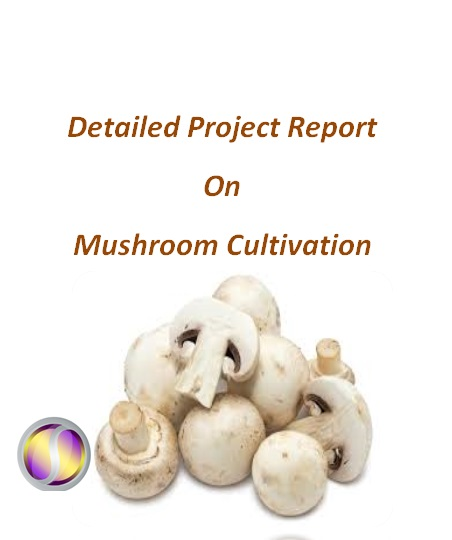 Project Report on Mushroom Cultivation