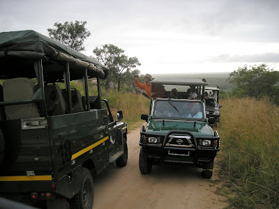 South Africa, Kruger National Park, safari, Safari Open Vehicle, Kruger traffic