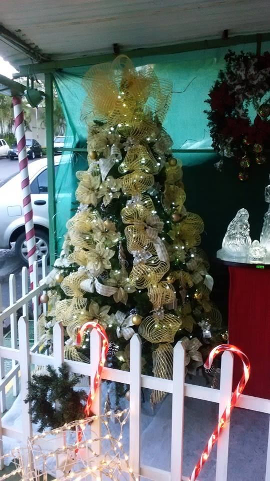 toda la plaza se llena de luces navideas y muchos detalles ideales para decorar tu casa en esta navidad