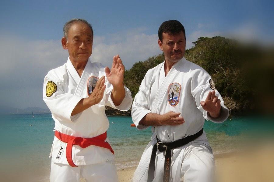 Karate vs. Kung Fu