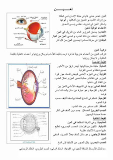 1 - ملخص دروس الايقاظ العلمي سنة سادسة صور