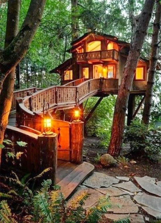 Tree House - Casa na árvore
