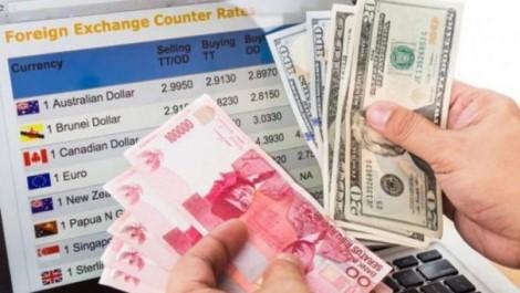 Pengertian Valuta Asing Dan Fungsinya Lengkap