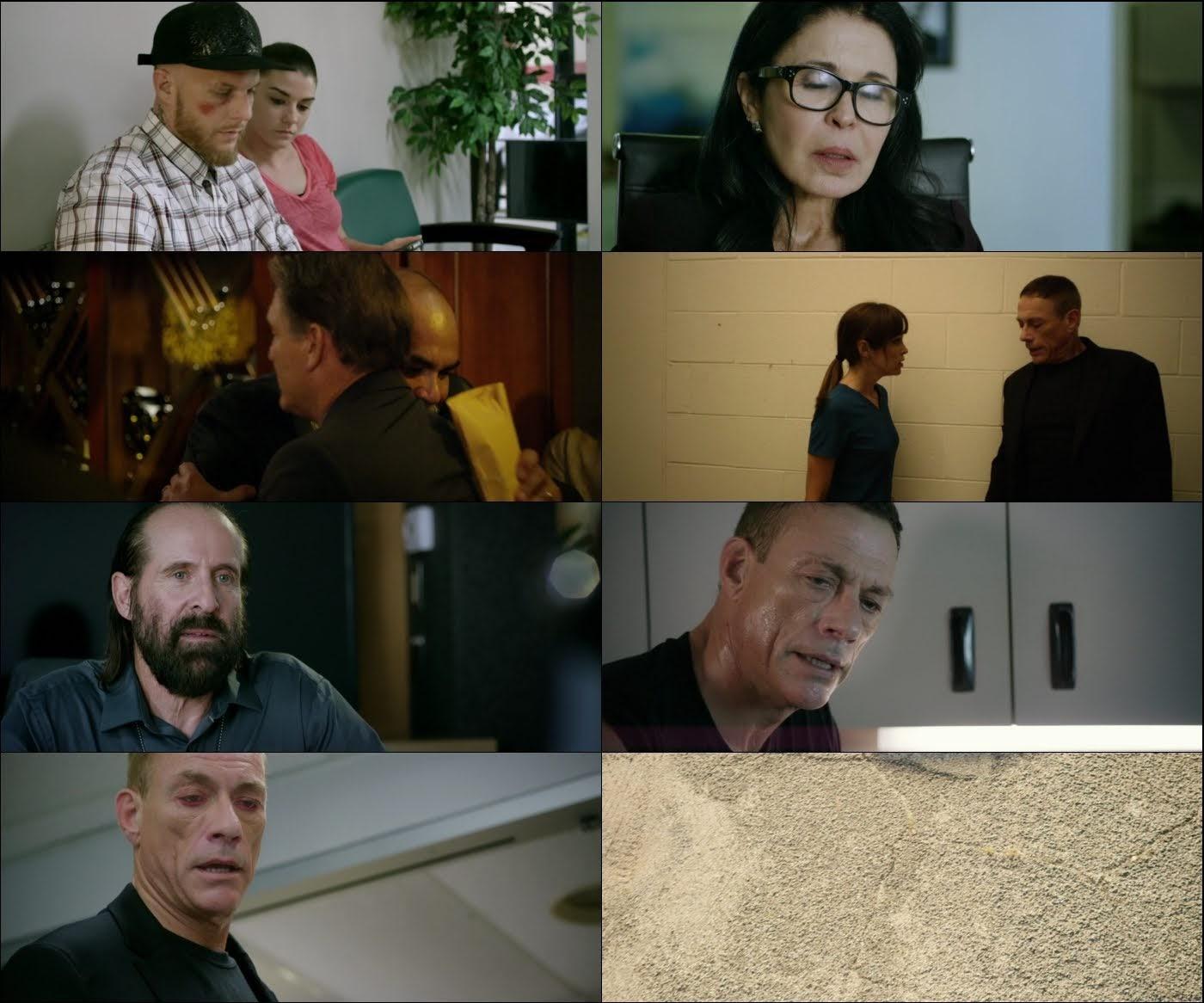 Sed De Venganza 1080p Latino