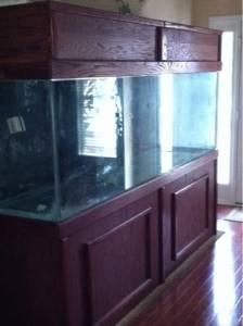 Giant Aquariums: 300 GALLON AQUARIUM W/ STAND   $2000 (NEWNAN)