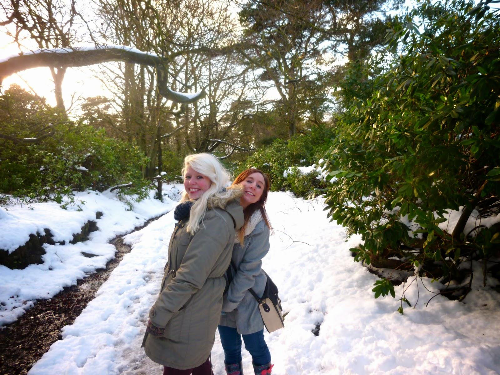 Exploring Longshaw Estate