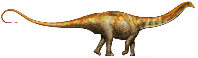 Descoberto dinossauro herbívoro tão grande que não tinha predadores