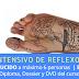 Curso Intensivo de Reflexología Podal, por Cristina Inglés