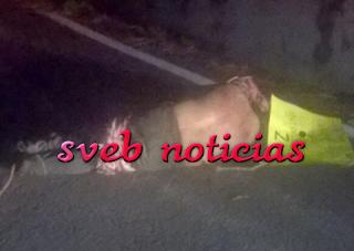Tiran cuerpo amordazado y ejecutado en Autopista Orizaba-Córdoba