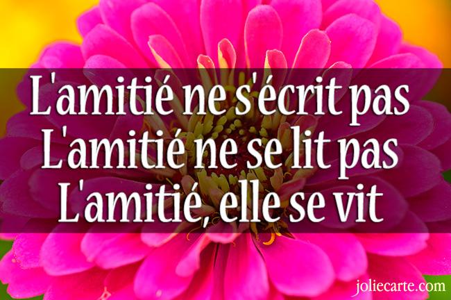 Citations Et Proverbes D'Amour Et D'Amitié