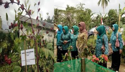 Kelompok Toga Desa Langkang Baru Jadi Wakil Kotabaru ke Provinsi