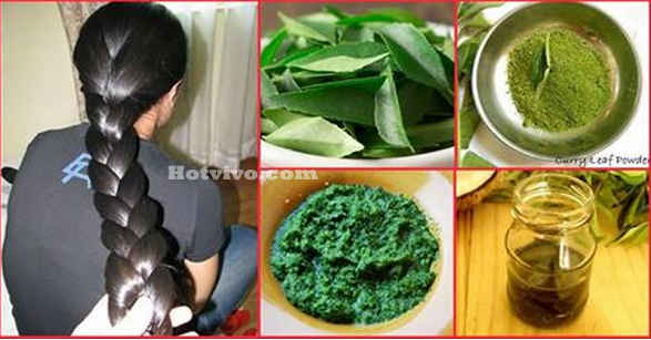 Use Curry Leaves For Hair Growth
