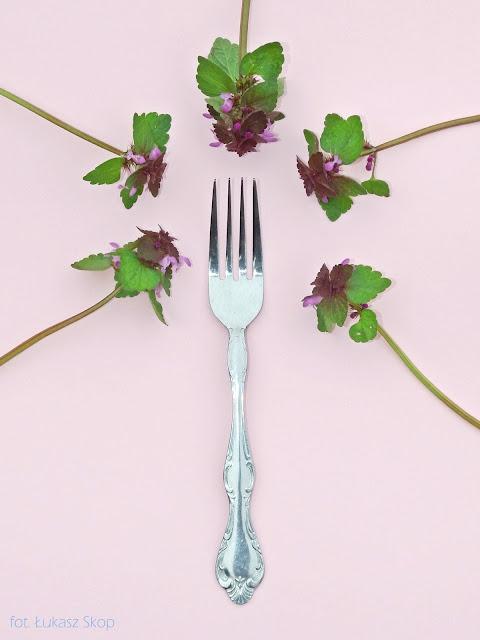 jadalne kwiaty jasnoty purpurowej