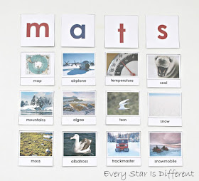 Antarctica first letter sound sort with free printable