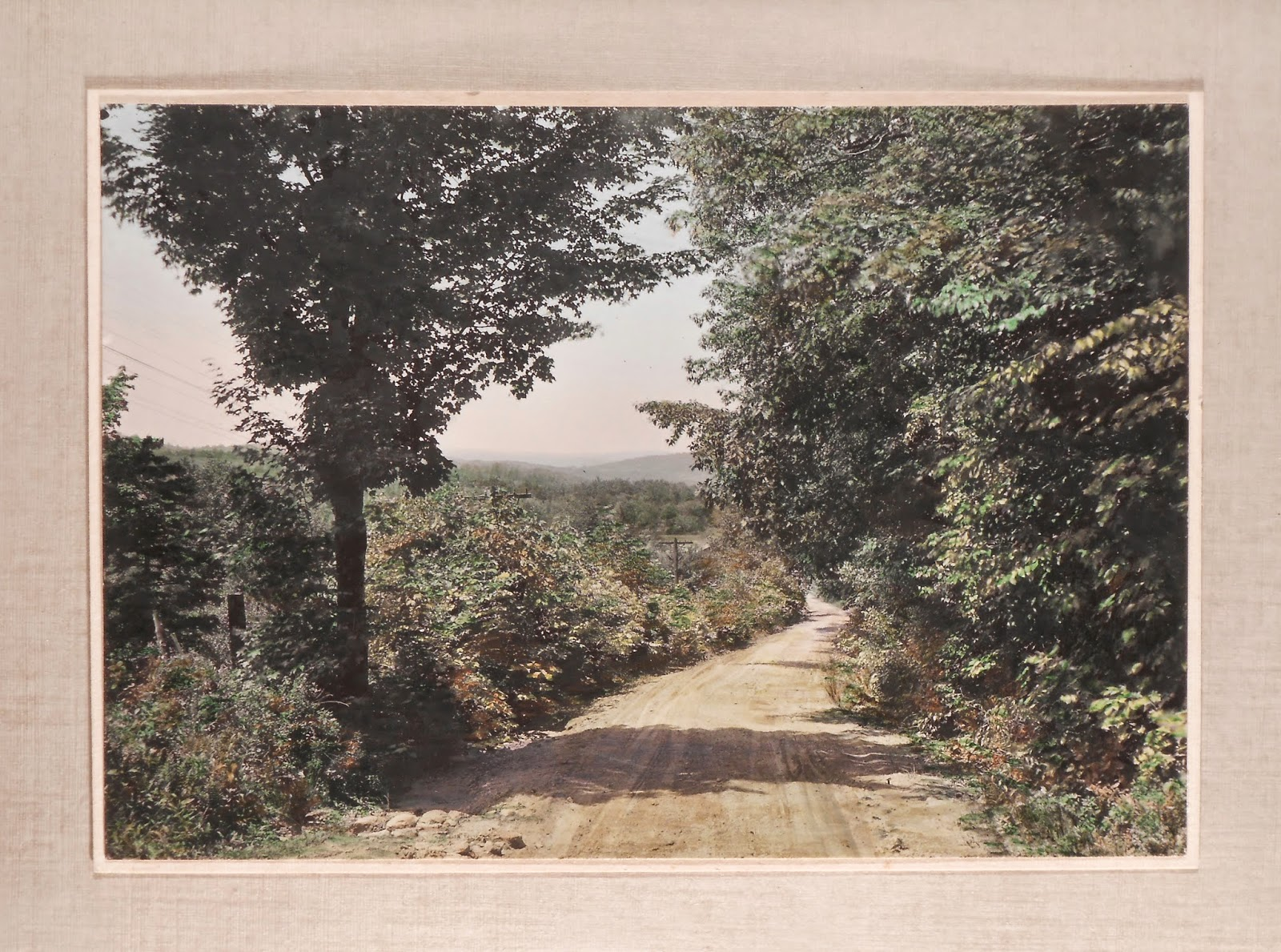 A color photograph of a dirt road framed by trees and greenery.