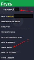 Payza verification
