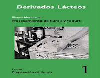 preparación-de-kumis-1