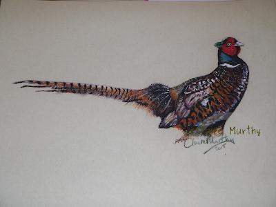 field bird painting pheasant british wildlife