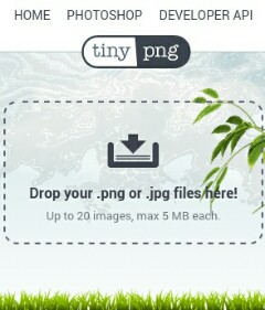 Cara Memperkecil Ukuran Foto Dengan Tinypng Hingga Maksimal
