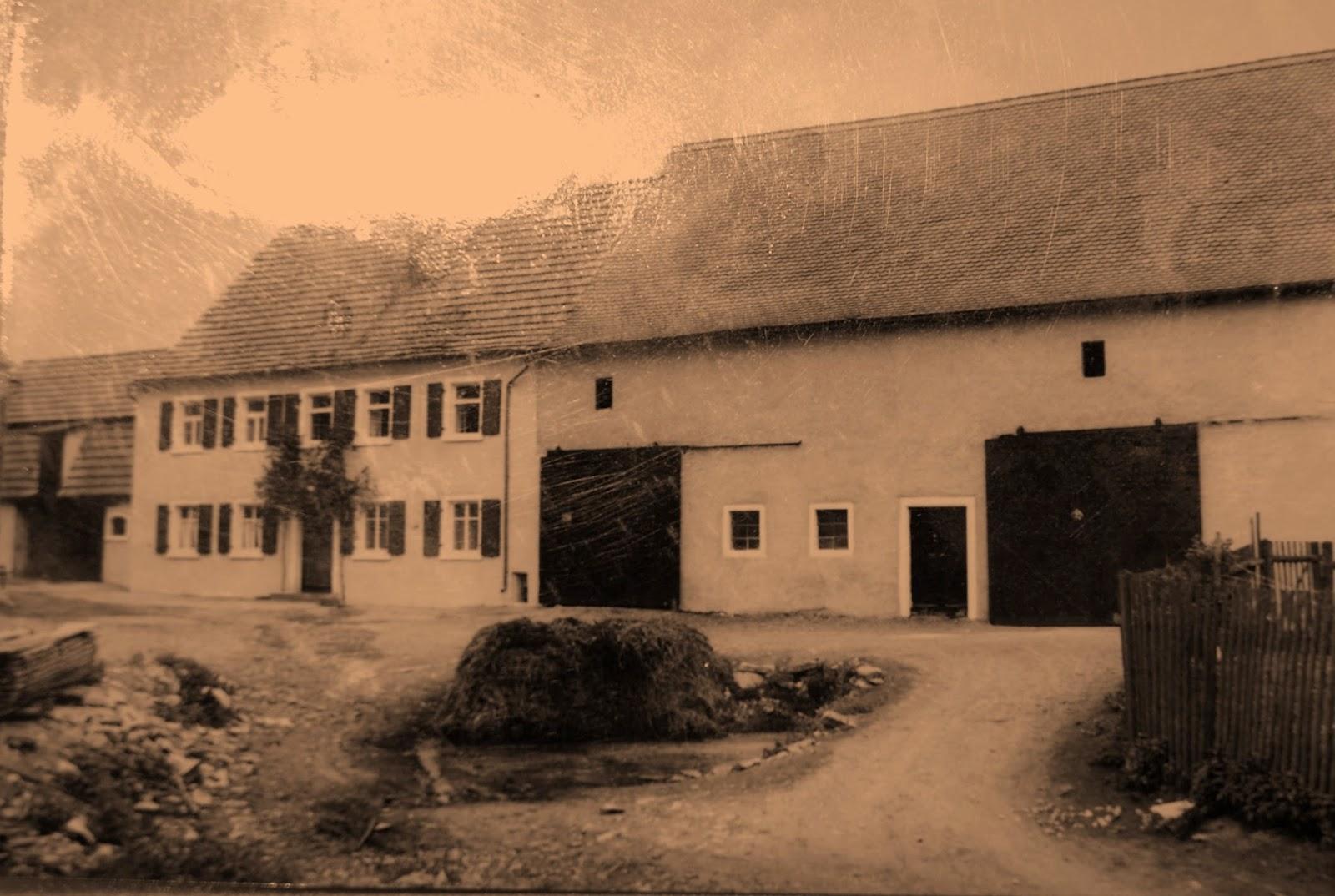 ein Bautagebuch: 6. Alte Bauernhäuser