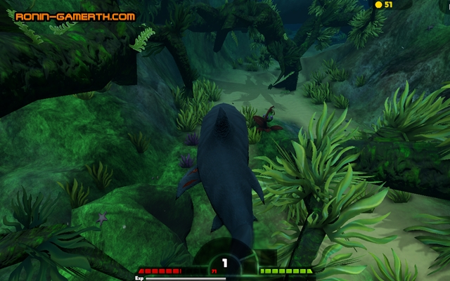 feed and grow fish free download for pc