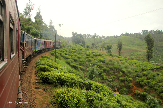 Sri Lanka Best Train Ride