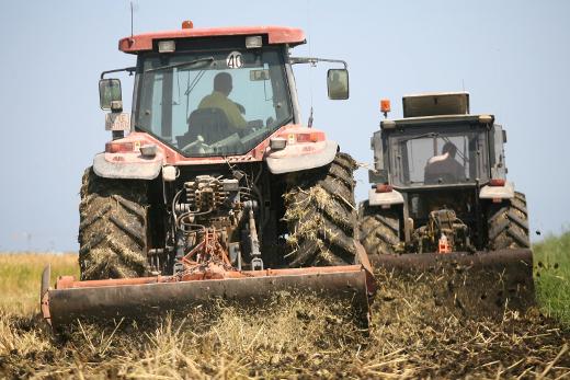 Convocadas las ayudas para la formación y adquisición de competencias para actividades agroalimentarias