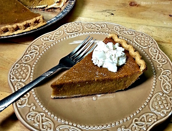 Egg-Free Pumpkin Pie