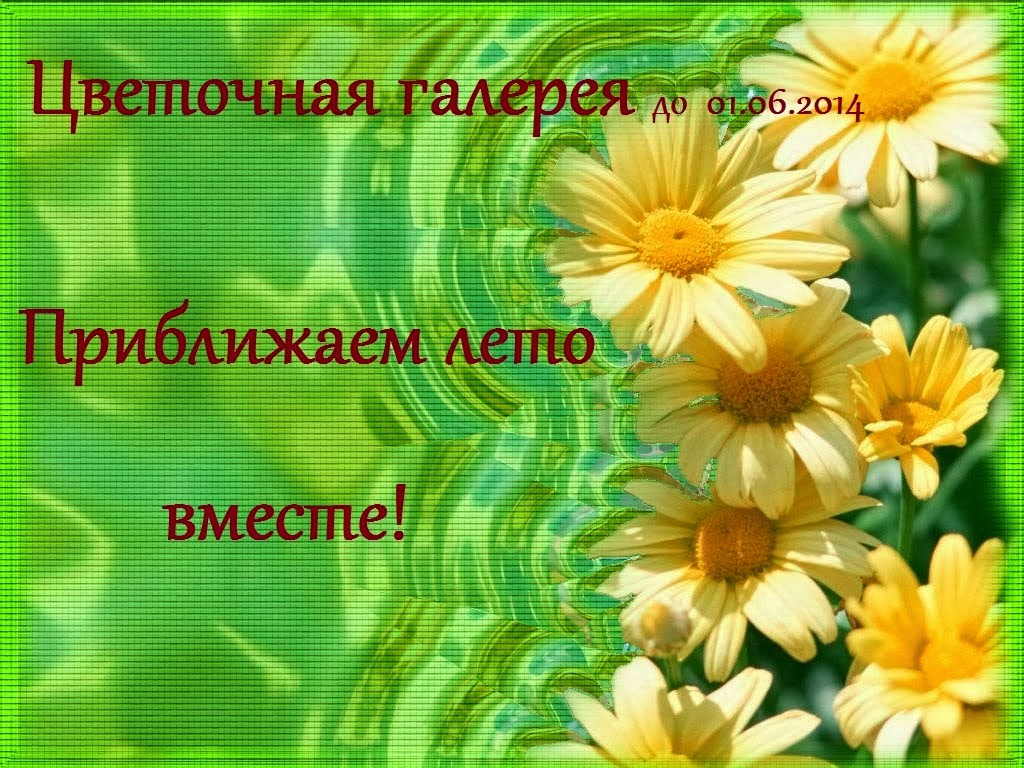 http://malangika.ru/2014/03/Cvetochno-letnyaya-galereya-Chast-vtoraya.html