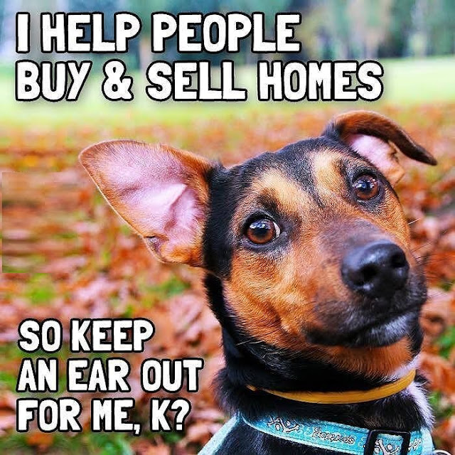 Funny Real Estate Memes - Help People