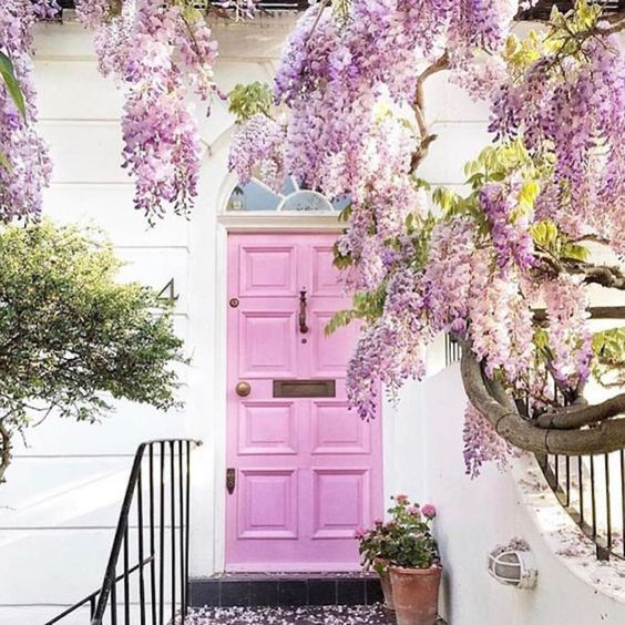 Wisteria and gorgeous pink front door  beautiful home exterior seen on Hello Lovely Studio