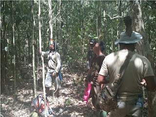 Pengertian, Maksud dan Tujuan Hutan Kemasyarakatan (HKm) Menurut Ahli