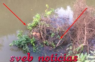 Hallan cuerpo sin vida debajo puente en Chinameca Veracruz