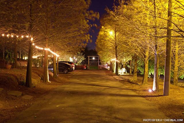 9097 - MITAKA 3e CAFE龍貓夜景咖啡,夜裡的黃金森林好迷人,浪漫夕陽與美麗夜景盡收眼底