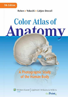Human Anatomy 7th Edition Pdf