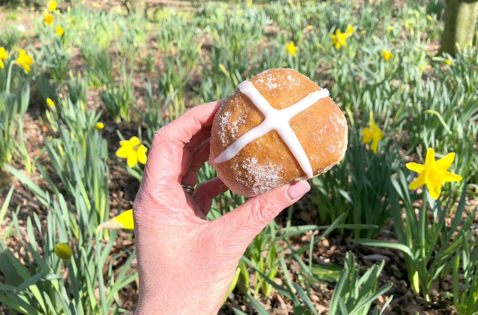 The Best Easter Cakes and Treats in Newcastle - Proven Doughnuts