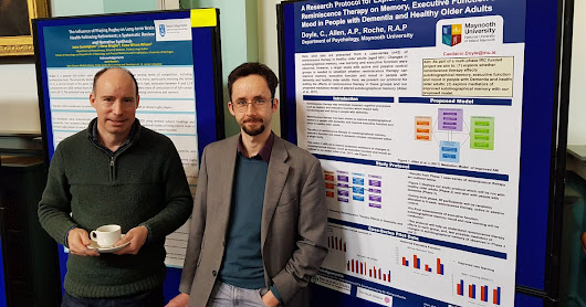 "Conference review: ""Research and Healthcare Responses to the Challenge of Brain Conditions in Ireland"""