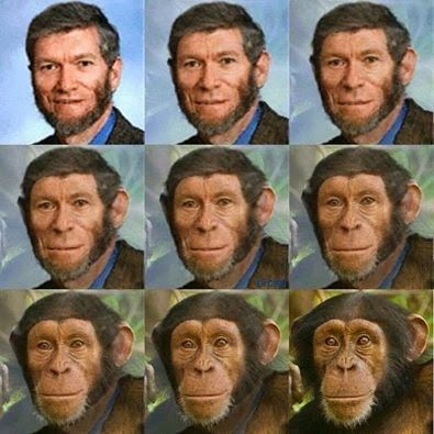 Creationist Ken Ham Evolution Joke Picture