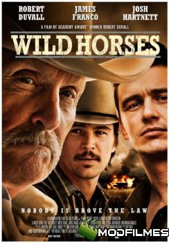 Capa do Filme Cavalos Selvagens