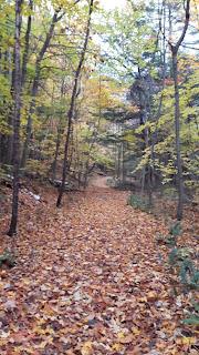 Sentier de Split Rock Mountain, Adirondaks, feuilles mortes, sentier, forêt l'automne