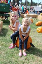 2013 Harvest Festival Coloring Contest Kids Macaroni Kid