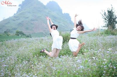 thiếu nữ tung bay bên hoa cải trắng mộc châu