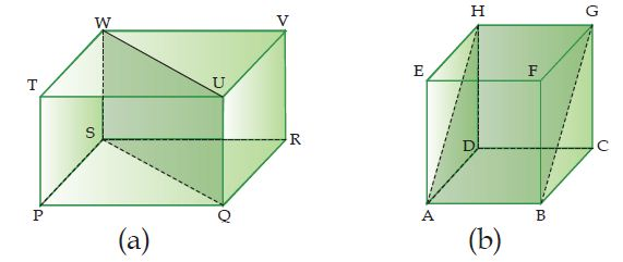 Bidang Diagonal Balok dan (b) Bidang Diagonal Kubus